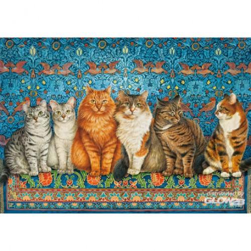 Cat Aristocracy