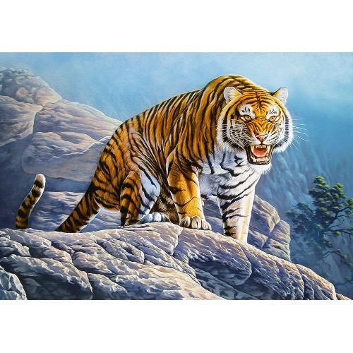 Tiger on the Rocks